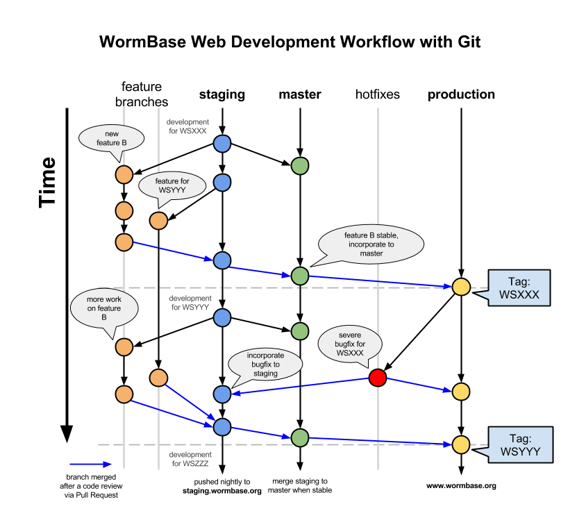 Git Workflow - WormBase4.png